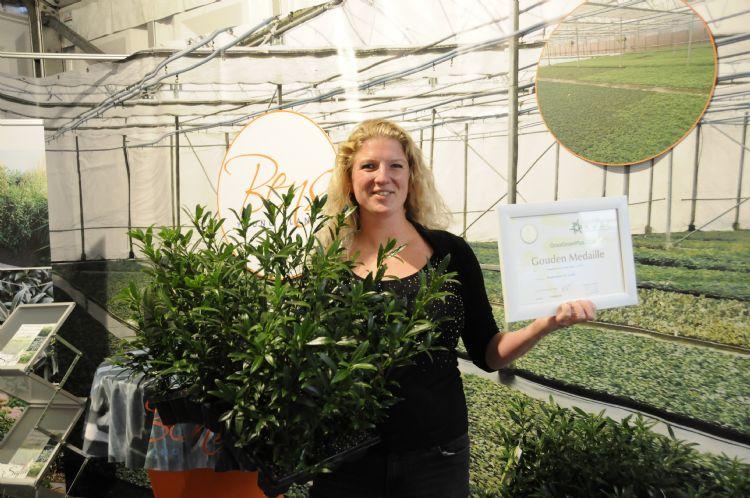 Susanne Blom met Prunus laur. 'Sofia' PBR wint een GOUDEN MEDAILLE op Groot Groenplus 2019