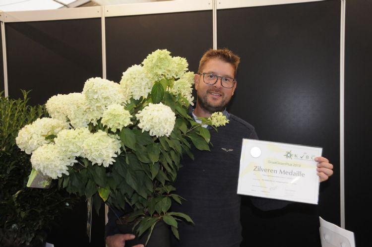 Hortensia paniculata$L Skyfall' ('Frenne' PBR) van Guido Rouwette en Plantipp