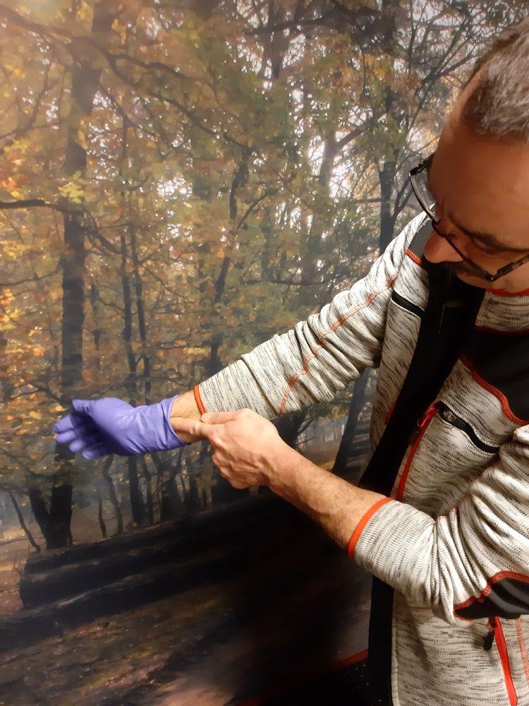 Lars Rodrigues laat zien hoe je met brandharen besmette pbm's uittrekt volgens het veiligheidsprotocol dat tijdens de training eikenprocessierupsbestrijding wordt behandeld.