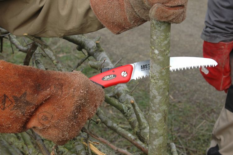 Commentaar bij het inzagen van een 'staander' met de Ars GR 17: 'Het voelt wat wiebelig, maar dat kan ook aan het natte hout liggen.'