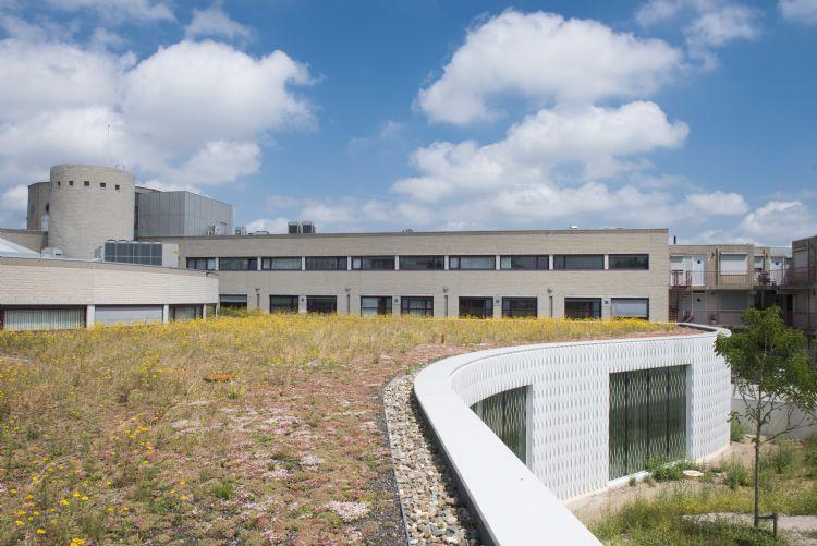 Kennis-, innovatie- en adviescentrum gemeentehuis Landgraaf. Aanleg retentiedak: Jonkers Daktuinen Venlo