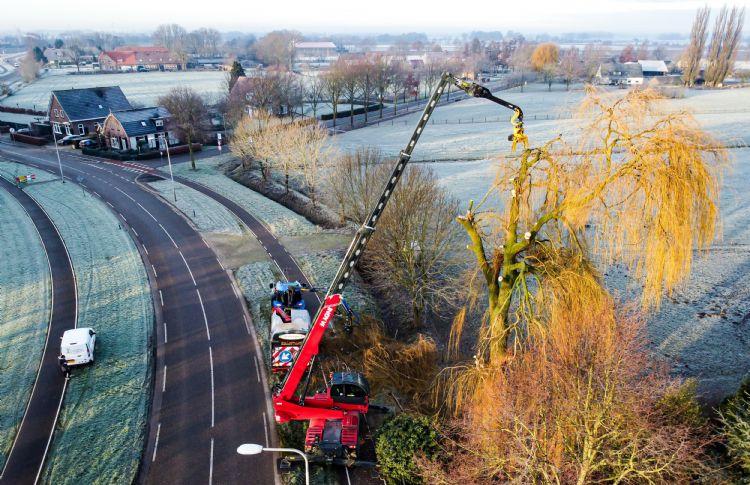 Met verreiker, fly jib en GMT035 TTC hoge bomen te lijf gaan. Foto: Bastijn de Groot en BoomOntzorging.com
