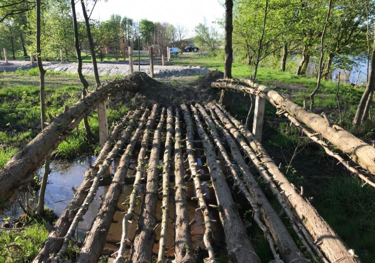 Een levende brug van watercipressen op de wereldtuinbouwtentoonstelling.