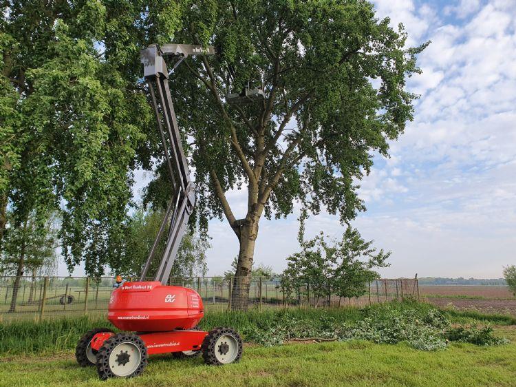 Foto: Van Weert Rondhout