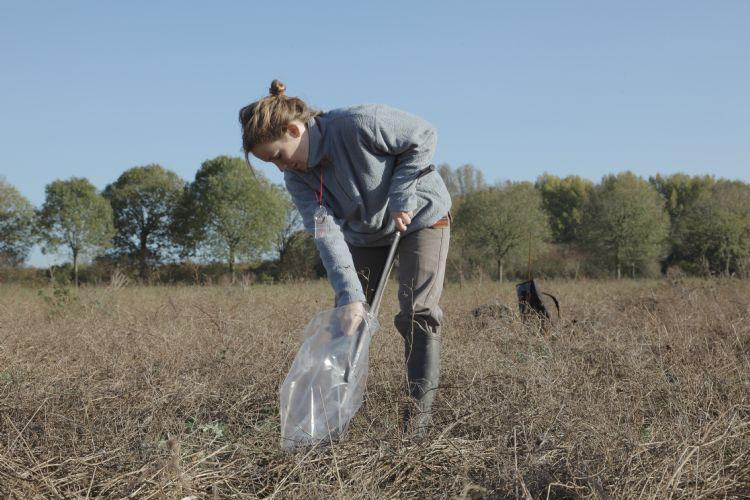 Bodemecoloog Isabelle van der Zanden. Foto: NIOO