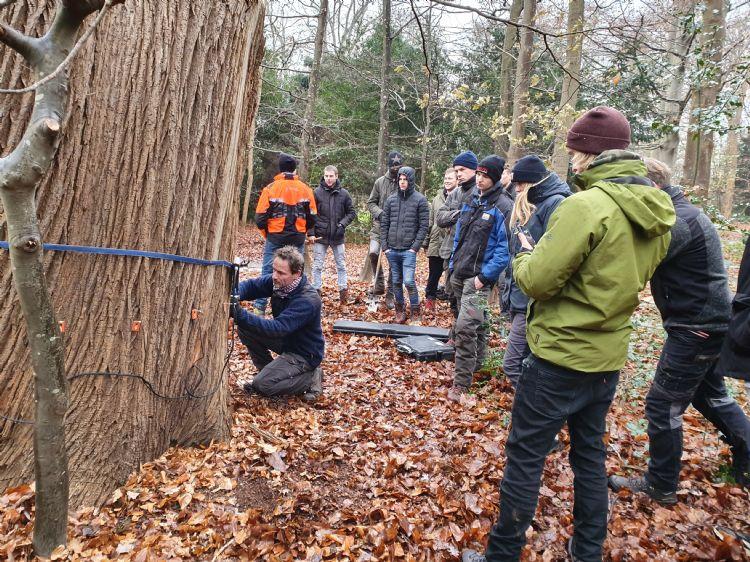 Helicon geeft les in boomverzorgingstechnieken, maar ook in boomtechnisch onderzoek